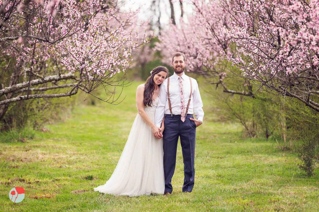 peach blossoms and a just married couple standing between the trees at The barn at Drewia hill